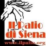 banner paliosiena - Palio di Siena - il Workshop - fotostreet.it