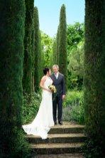 Hochzeit-Baum-web