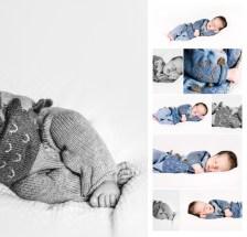 newborn-dino-suess-web