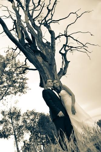 Portret pary młodej pod starym drzewem