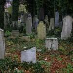 Dwa stare cmentarze: ewangelicki i żydowski, jedna historia