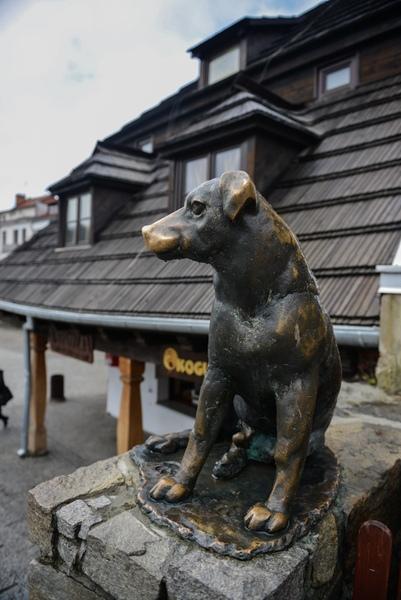 Kazimierz Dolny nadWisłą, rzeźba psa koło Rynku