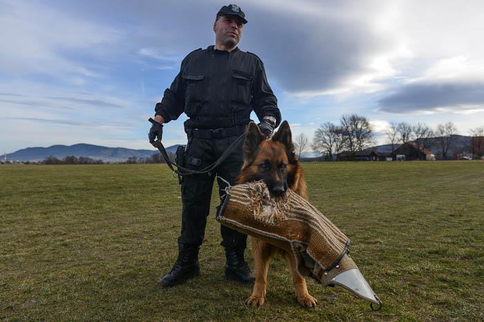Policjant z jego pies na lotnisku