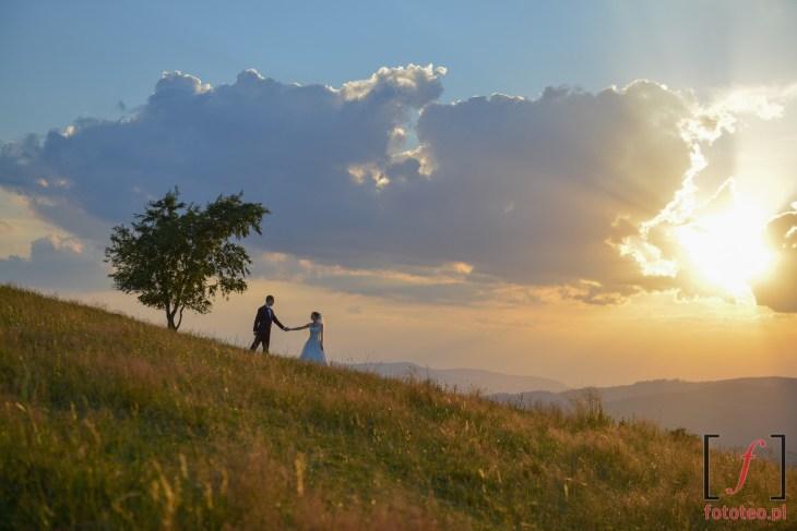 Ślubna sesja Koniaków podczas zachodu słońca