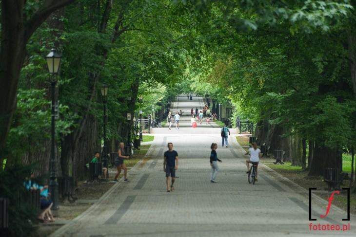 Park w Pszczynie
