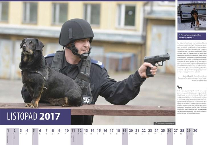 Kalendarz 2017 listopad. Policjant zKMP Bielsko-Biala Wojciech Gwizdala