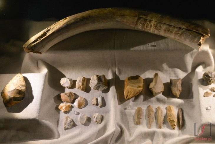Archeologia. Muzeum Śląskie Katowice