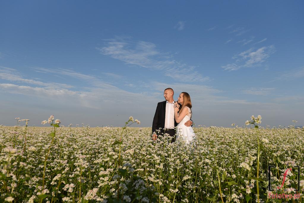 Sesja ślubna w polu kwiatów