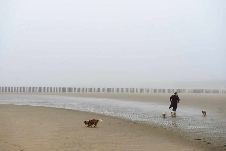 Mistig strand, Nieuwesluis