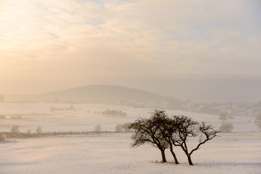 Winterlandschap met drie bomen, Bettenfeld