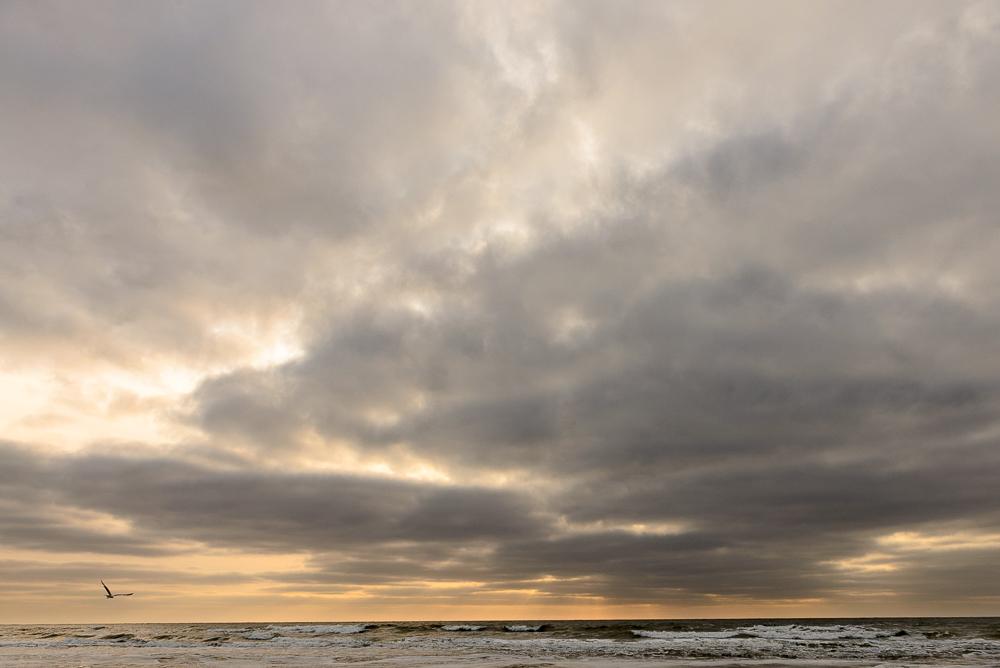 Eenzame meeuw tussen wolken en zee