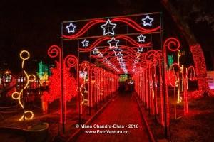 Bogotá, Colombia: Christmas lights on Plaza Usaquén
