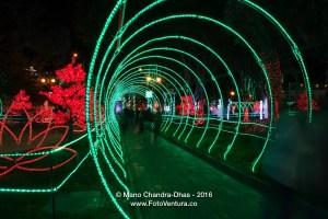 Bogota Colombia - Christmas Lights on the popular Plaza Usaquen