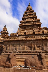 Mahabalipuram, India - 8th Century Shore Temple and Sculpted Cows