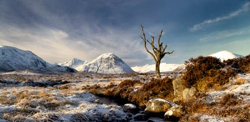 Rannoch Winter by Peter Paterson