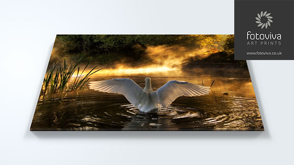 floating acrylic photo print