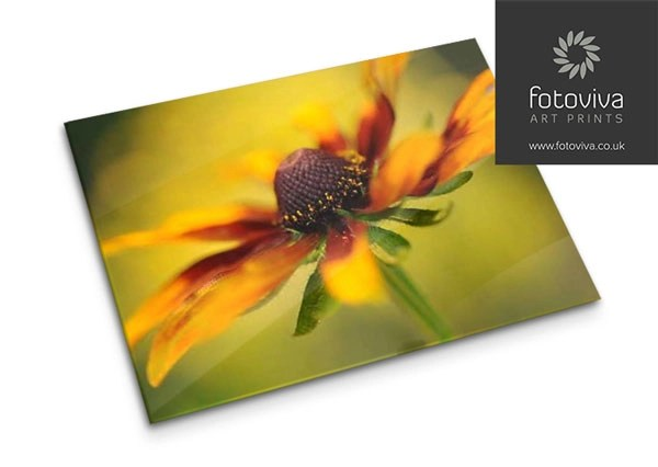 floral photo print on acrylic art sheet glass