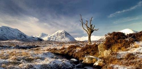 Rannoch Winter