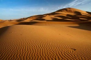 Sahara Lines