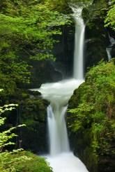 Waterfall on Hoar Oak River near Watersmeet, Exmoor, Devon, England. Spring (May) 2012. © Adam Burton