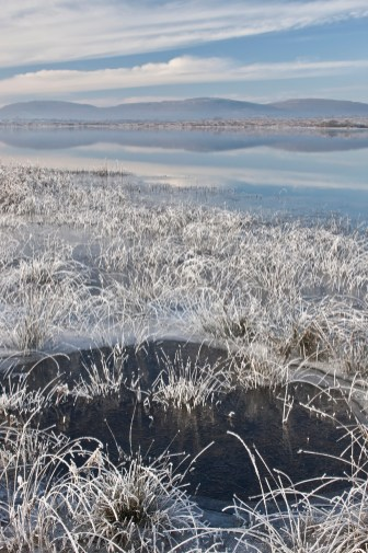 Hoar Frost, Lough Bunny, The Burren, Ireland. Canon EOS 1Ds III, Canon TS-E 45mm/2.8, ISO 100, 0.3s at f/22, Tripod. December. © Carsten Krieger.