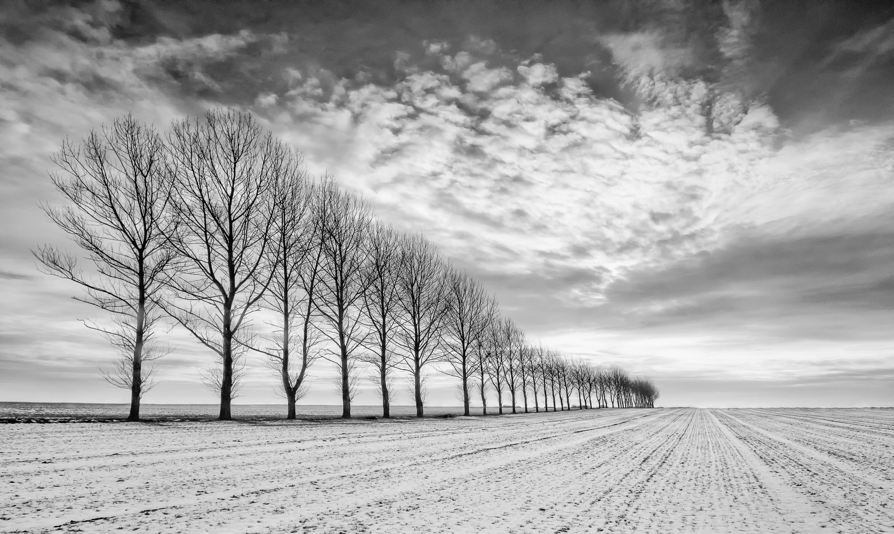 Ongar, Essex, Canon 550D, Sigma 10-20mm, ISO100, 13mm, 1/100s at f/11,. Tripod. © George Johnson