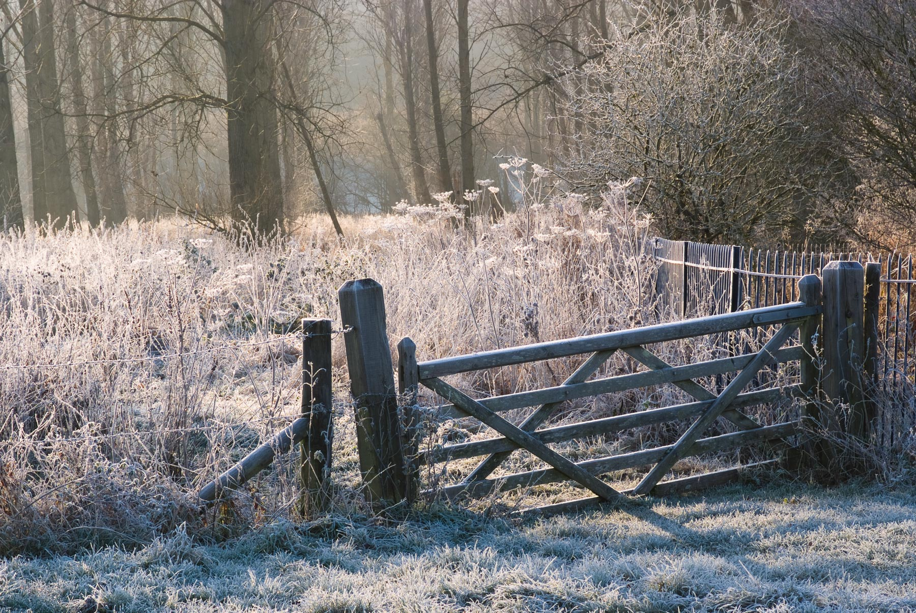 Frosty Gate, Minster Lovell, Nikon D700, Nikkor 28 - 105mm at 80mm, ISO 100, 1/13s at f/13, Tripod. January. © Sarah Howard