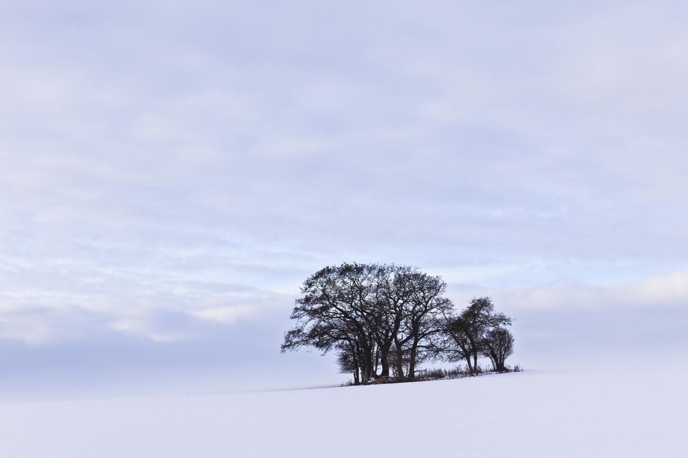 Near Tarrant Monkton, Dorset. Canon 5DII, Canon 24-105mm f/4L at 105mm, ISO 100, 1/20 sec at f/11, Tripod, polariser, © Mark Bauer