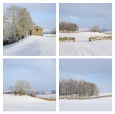 Wensleydale Quadtych. Fuji X-T10, Fuji 18-55mm, ISO 200, various exposures at f/7.1, handheld. January. © Lizzie Shepherd