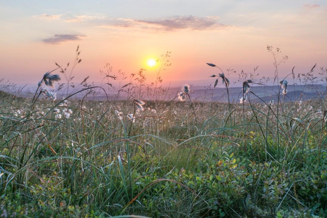 Sunset on Kinder's western edge. © Mick Ryan.