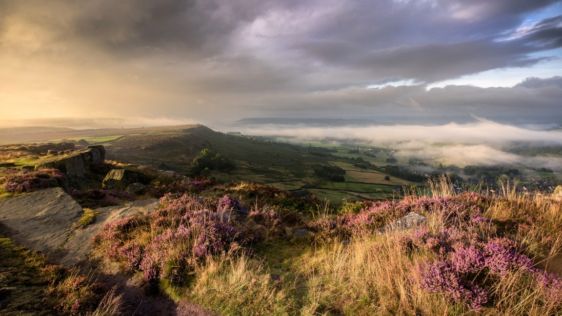The glorious purple heather at the top of Curbar looking across to Baslow Edge and Chatsworth. Sony A7r, Sony 16-35mm f/4 at 16mm, ISO 100, 1/125s at f/11. Handheld. 7.22am, August 16th, 2016. © Andrew Yu