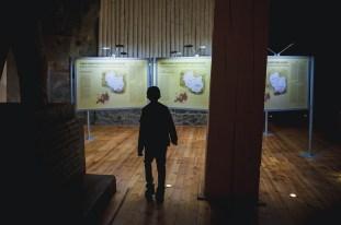 wystawa_wieliczka-110metrow-pod-ziemia_18