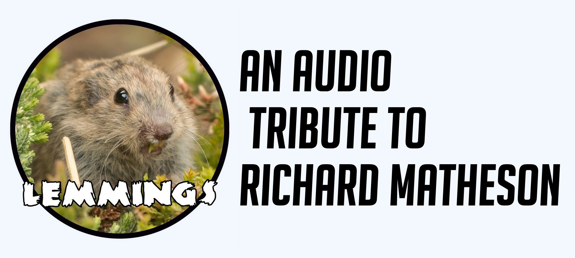 Lemmings Richard Matheson Banner Image - Photo: Flickr Sander van der Wel CC BY-SA 2.0.jpg