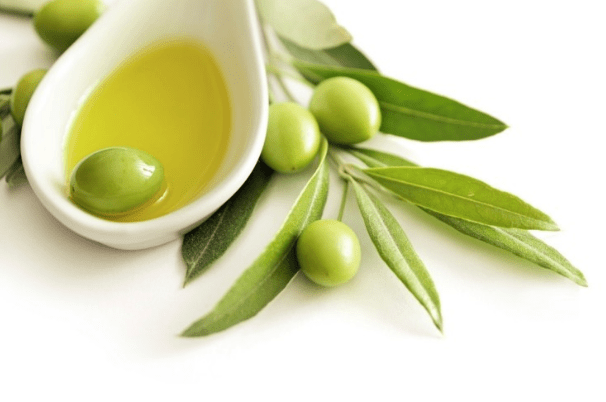 Olive Leaf Extract Immune System