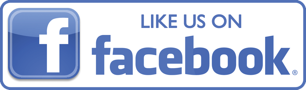 Image result for facebook mini logo png