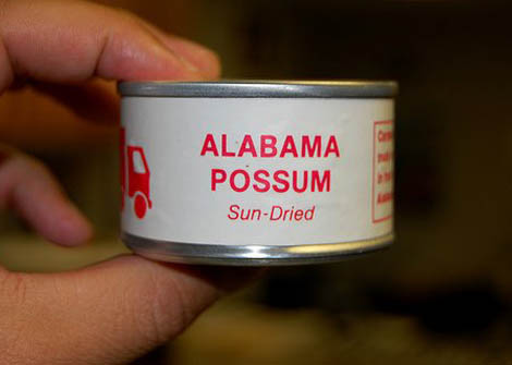 Sun-Dried Alabama Possum