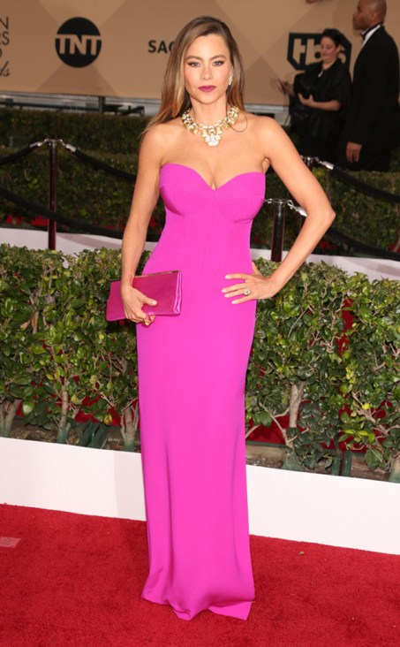 Sofia Vergara SAGs 2016 Hot Pink Vera Wang