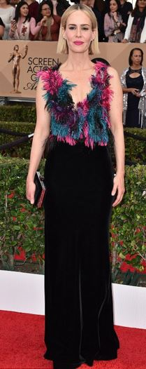 Sarah Paulson in Armani Prive Feathers and Velvet gown