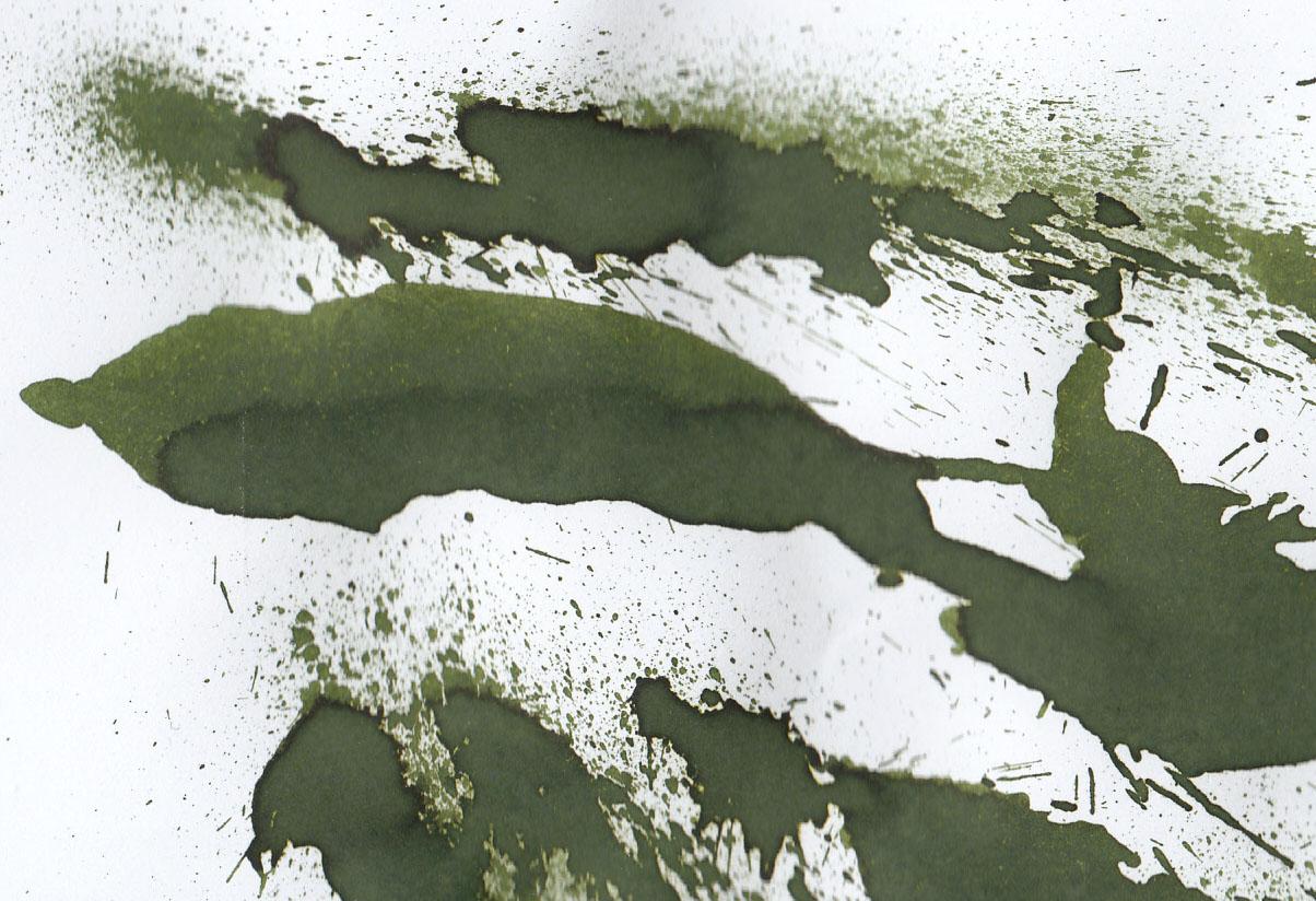 fpn_1463166510__classicgreen_diamine_is.