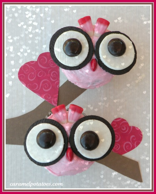 owl valentines cupcake with oreo cookie