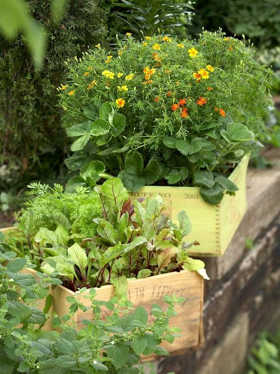outdoor wine crate planter