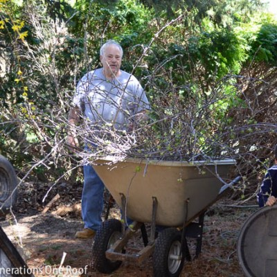 DIY wooden planter + multigenerational fun