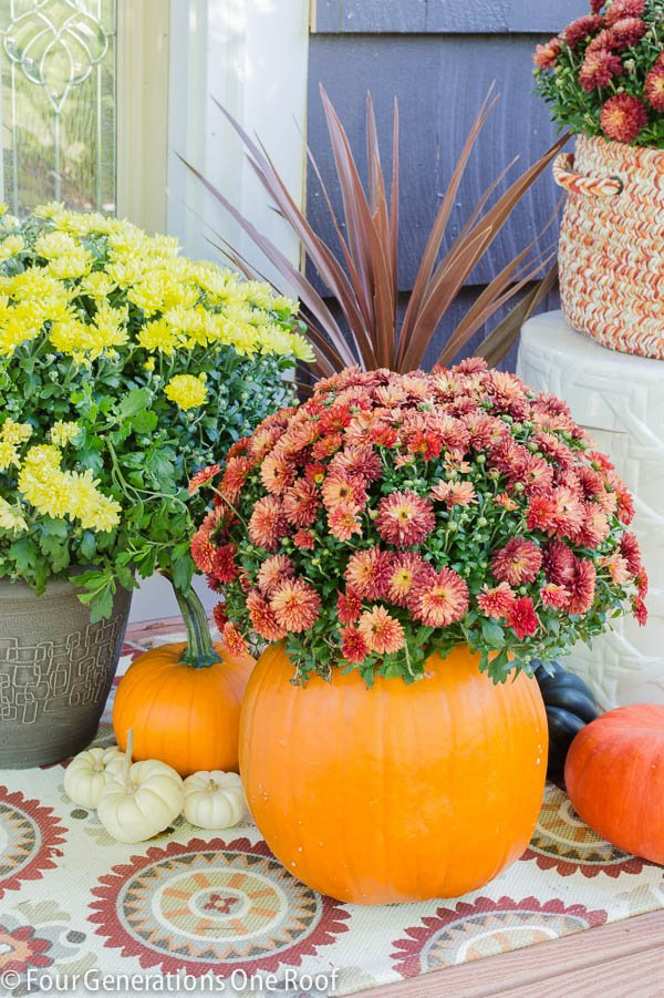 DIY Fall Pumpkin Planter 10 minute decorating idea