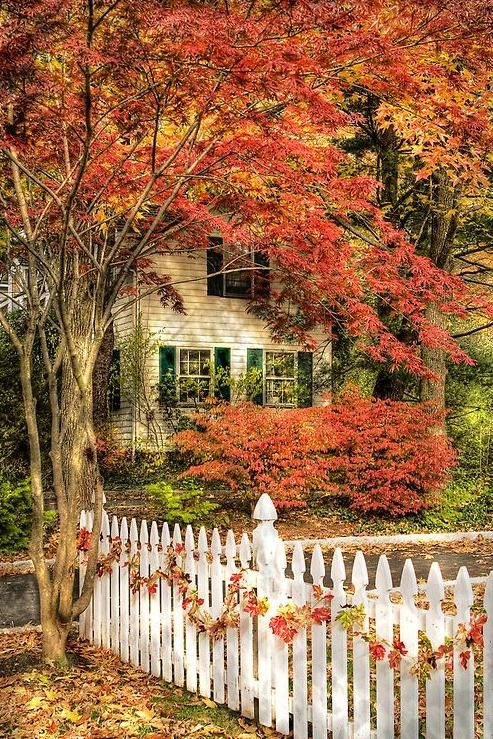 gorgeous front entry fall decorating ideas