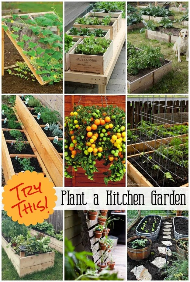 Grow A Vegetable Garden In Containers Four Generations One Roof