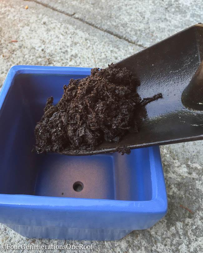 DIY blue herb planter-14