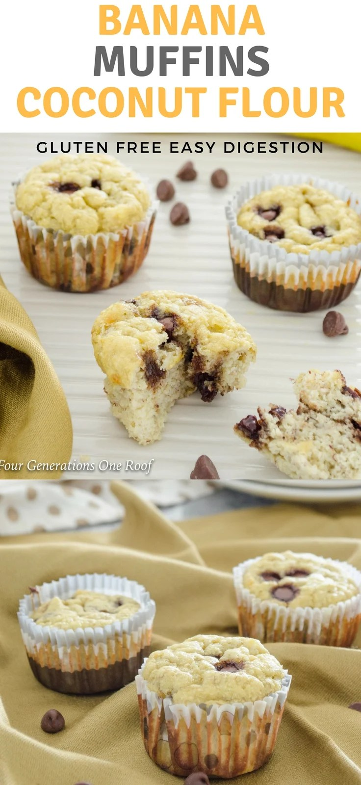 What is Coconut Flour & Why Use | Coconut Flour Banana Muffins with Chocolate Chips