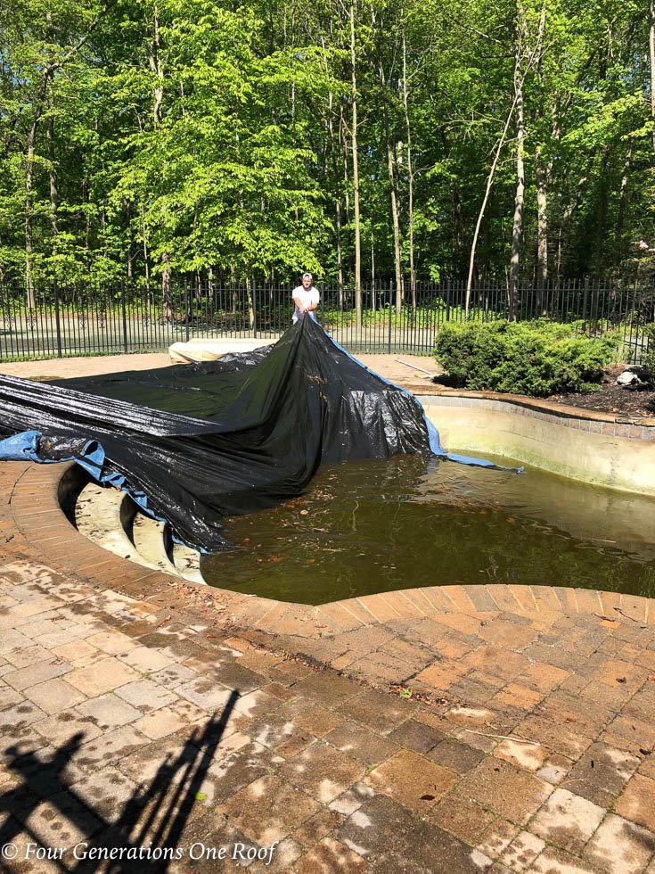 The Swamp Monster in our backyard is not my friend {our pool}