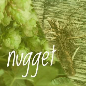 Nugget Hop 2018 Rhizome