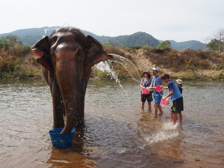 Bathing Elephants in Thailand
